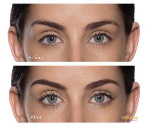 Eye Lash Services